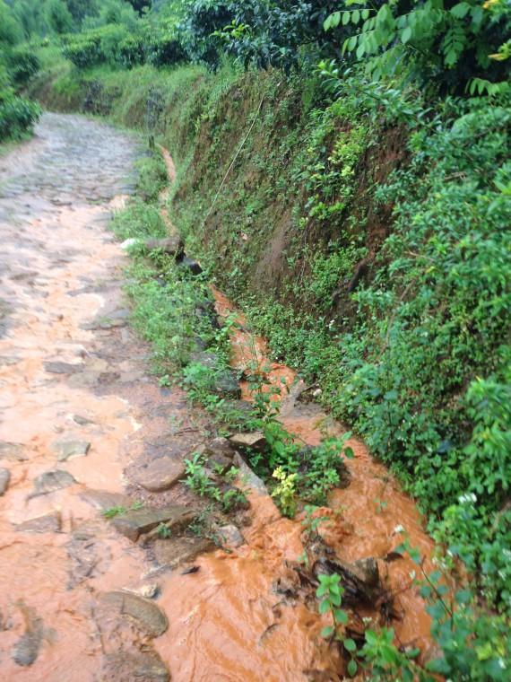 Водостоки по пути к чайным плантациям